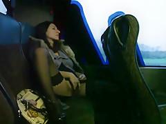 Rosario Gallardo's The Bus